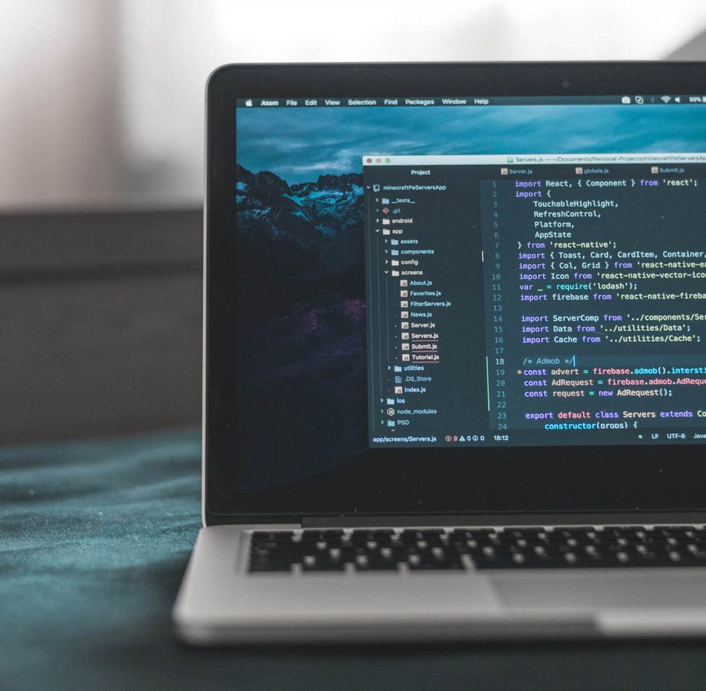 Website Design Development - Birdie Design
