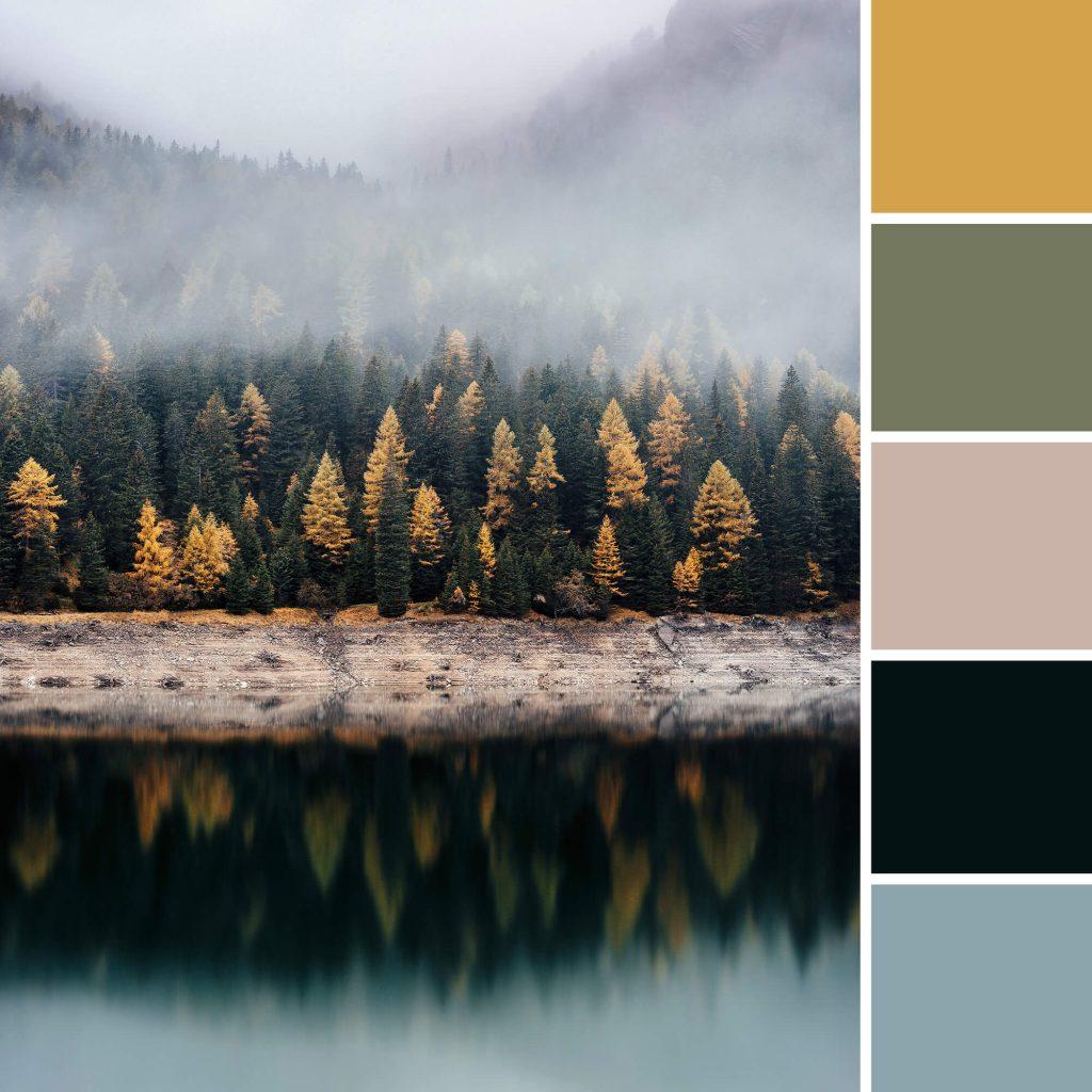 kleurinspiratie uit de herfst