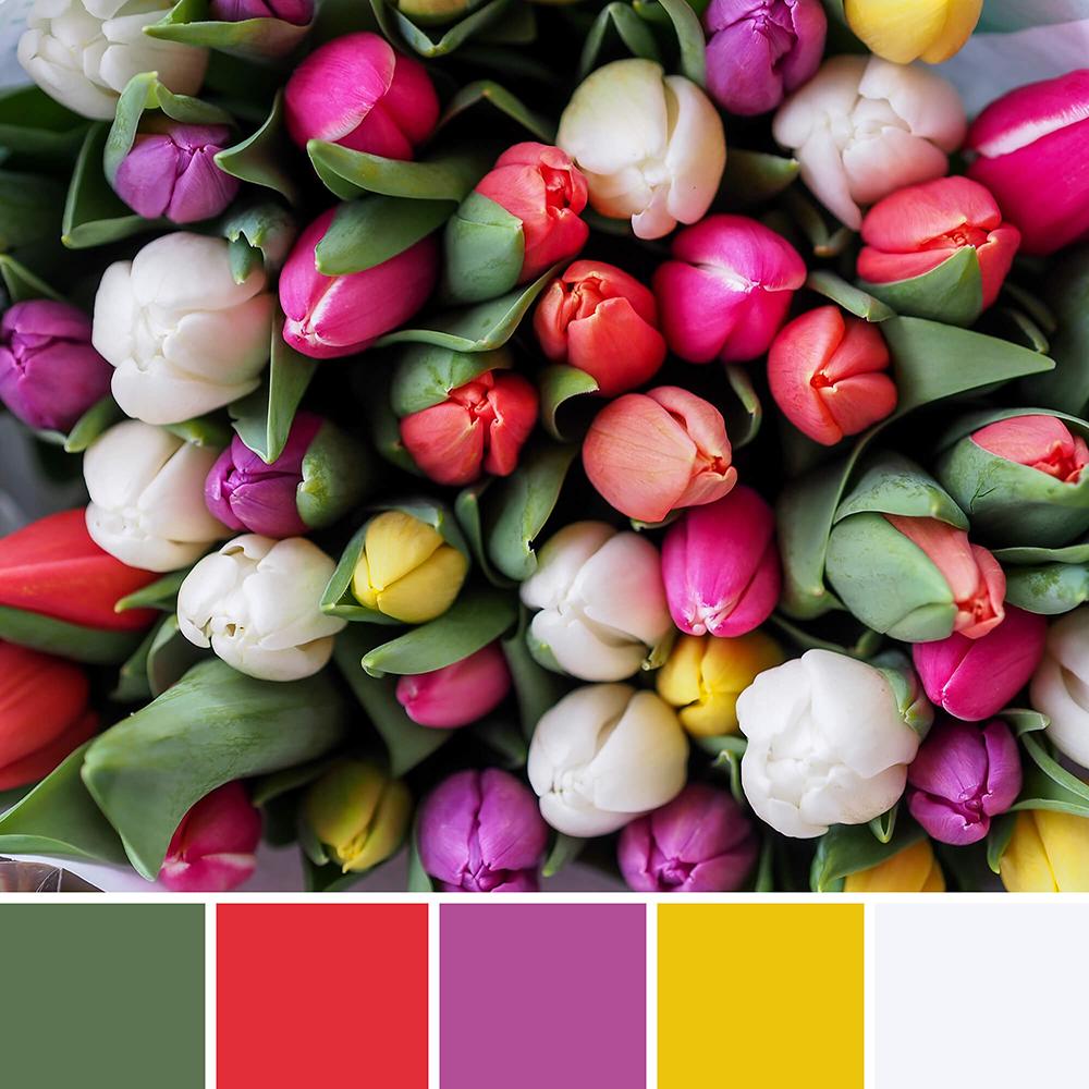 kleureninspiratie uit de natuur - tulpen